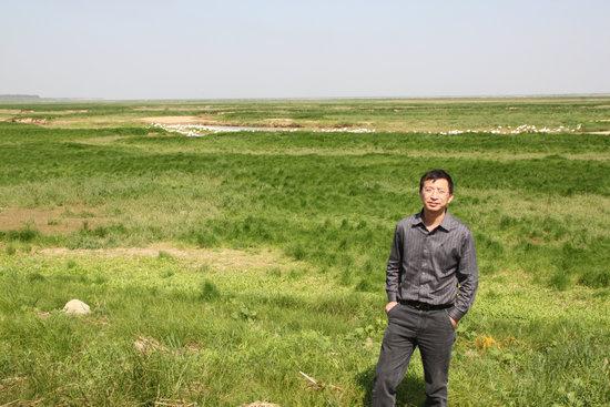 一年四季都有的牧草,只是3~5月份左右鄱阳湖涨水时