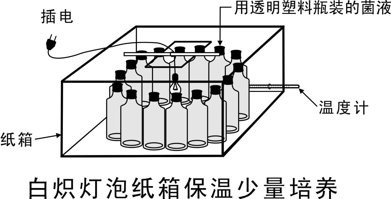 g ,培养参数总结:   (1)培养基,清水,菌种的比例: 0.